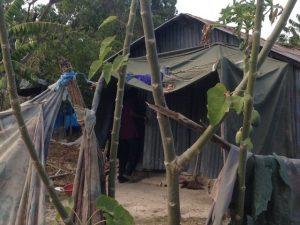 haitian home, blog